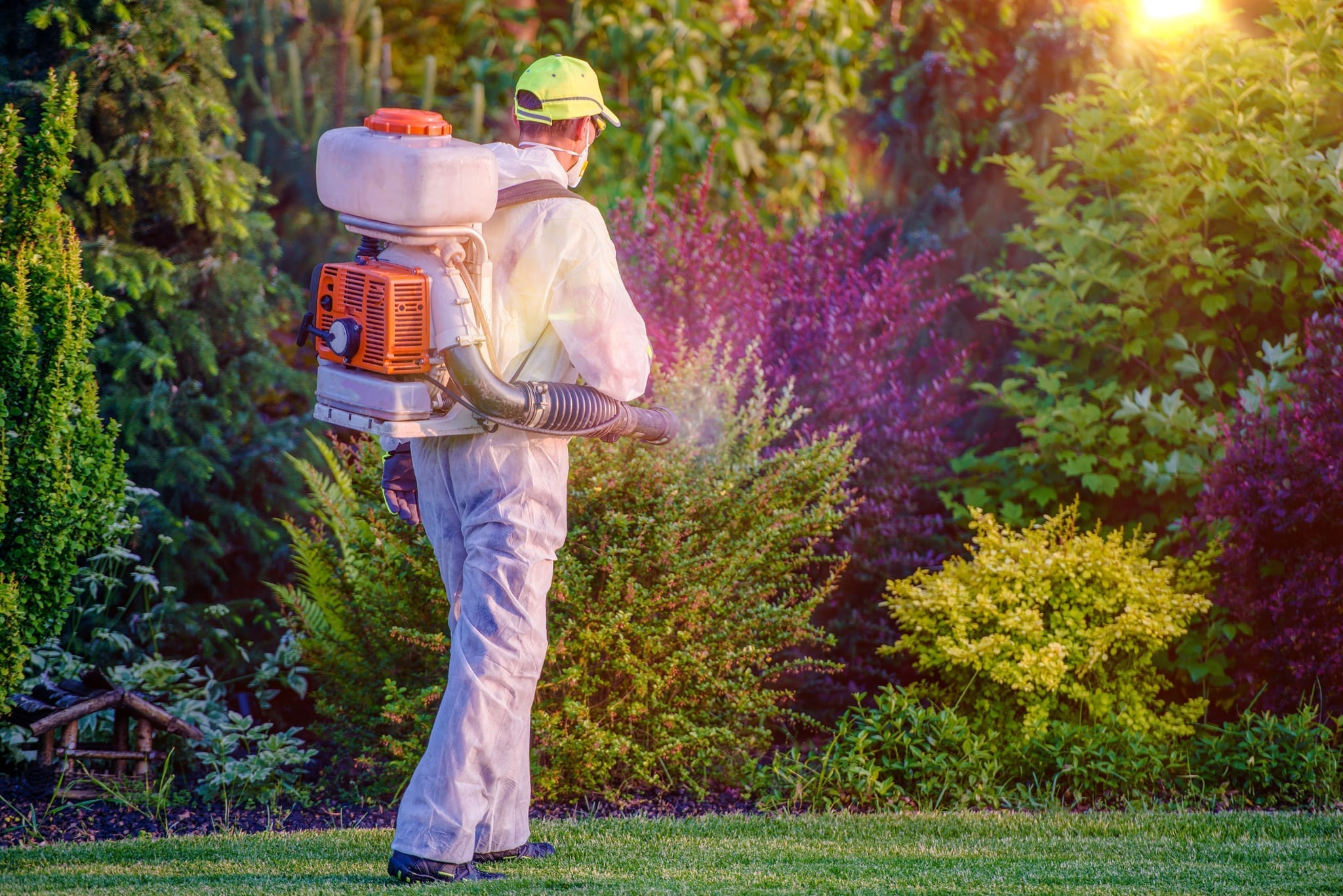 Pest Control Man Spraying in Garden