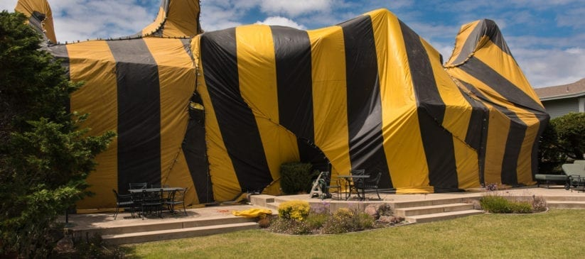 Black and yellow striped tent over home for fumigation