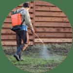 Pest control man spraying lawn spray